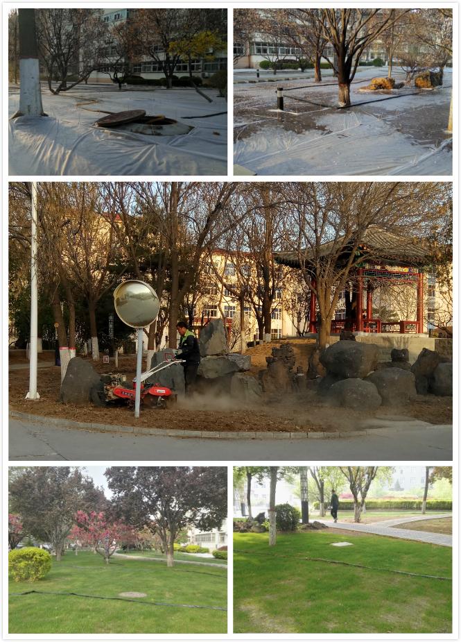 南校区草坪改造工作完成 校园绿化环境大幅改善